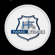 haras-felice